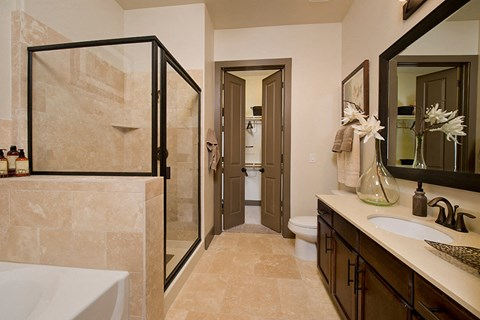 Bathoom with Walk-In Shower and Separate Soaking Tub