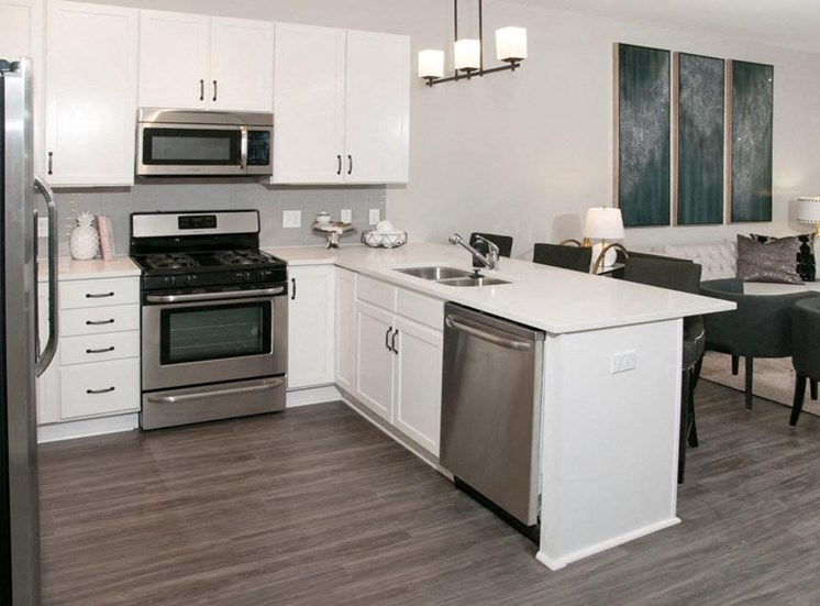 All Electric Kitchen, Residences at 1700, Minnetonka