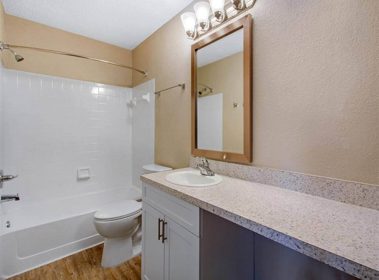 Bathroom with Vanity Space White Cabinets Grey Counter and White Bathtub and Shower