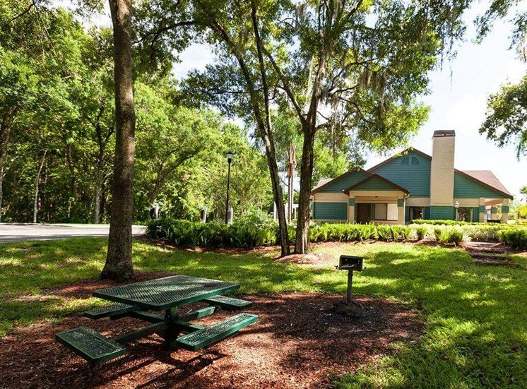 Picnic and Grilling Areas Shaded By Tall Trees