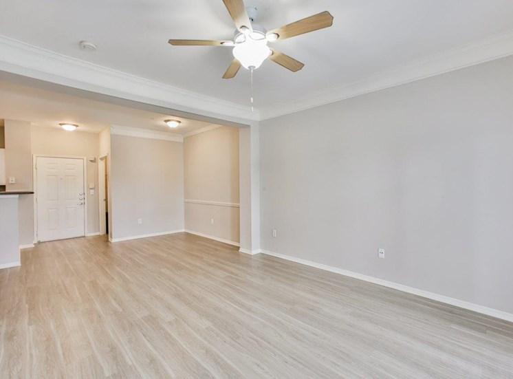 living room shot