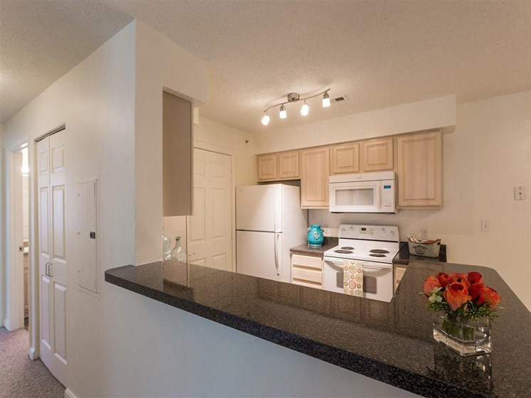 Fully-Equipped Kitchen With Plenty of Space at The Preserve Apartments in Walpole, MA