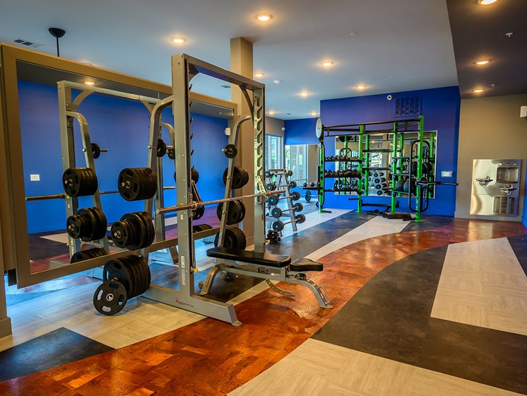 Free Weights and Equipment by FreeMotion