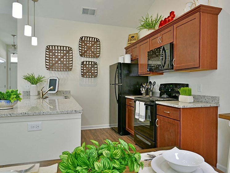 Efficient Appliances at Rose Villas - Avon, Ohio