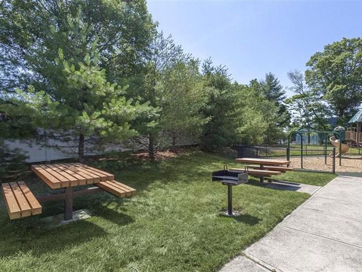 Picnic Tables on Lawn at Quail Run Apartments in Stoughton, MA
