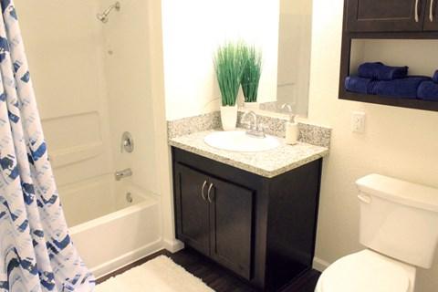 Model apartment home bathroom