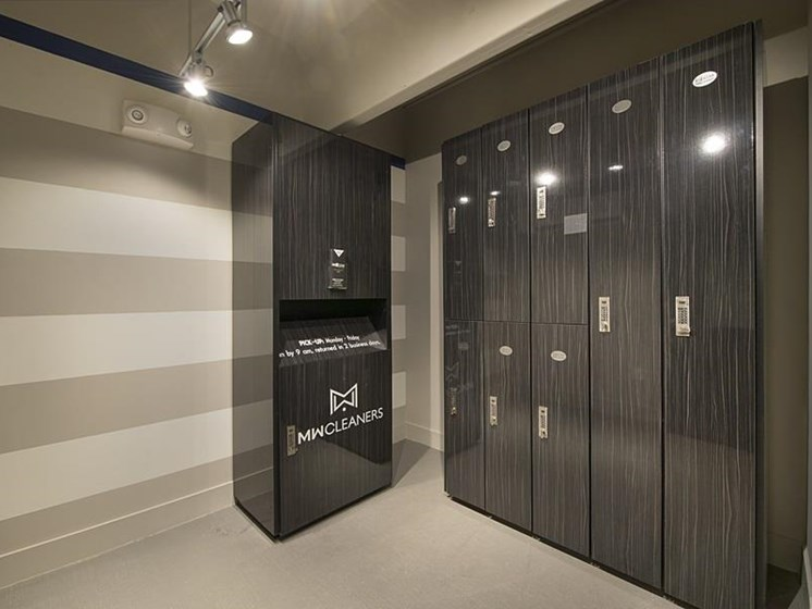 Dry cleaning lockers