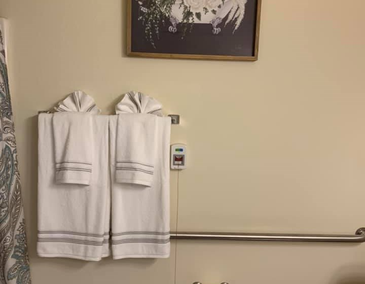 Bathroom Accessories at Savannah Court of Bartow, Florida, 33830