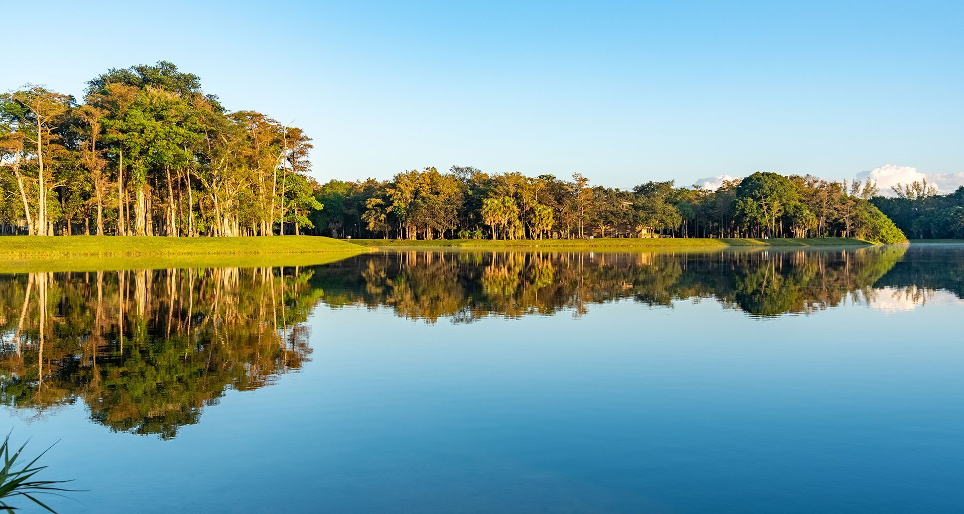 Breathtaking Lake-View at Pacifica Senior Living Forest Trace, Lauderhill, FL