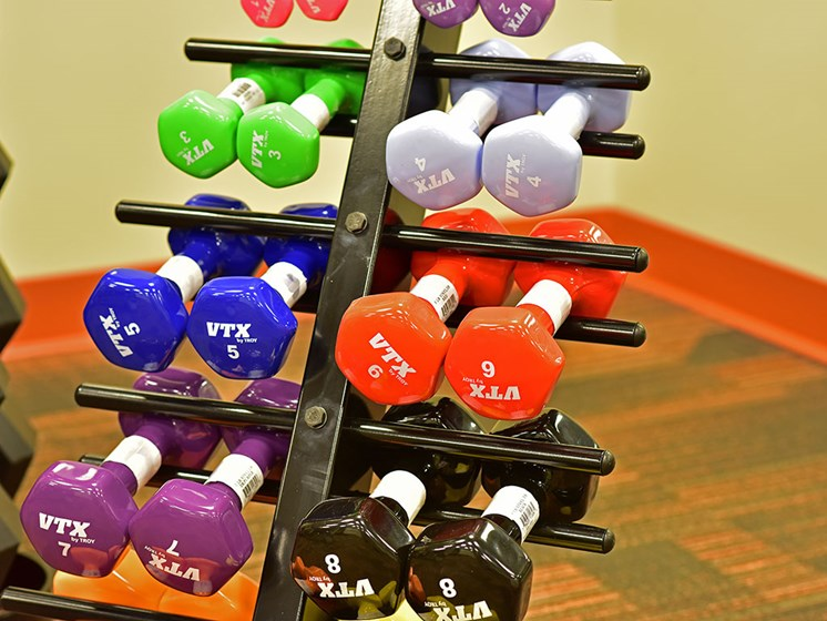 Free Weights In Gym at Rose Senior Living at Providence Park, Novi, 48374